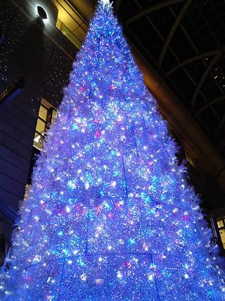 エルガーラのクリスマスツリー
