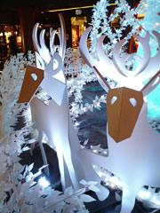 キャナルシティのクリスマスイルミネーション