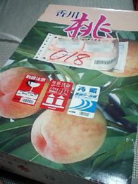 香川の白桃